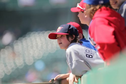 RUTH BONNEVILLE / WINNIPEG FREE PRESS  Eric Glays (grey) and his teammates with the Bonivital Red Sox Pee Wee Baseball team watch the Goldeyes practice on the field at the opening day training camp Saturday at Shaw Field.    May 07, , 2016