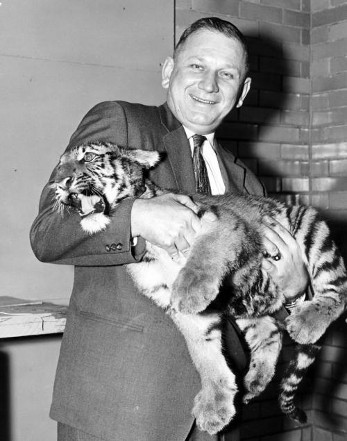 Winnipeg Free Press Archives January 14, 1959 (original caption): Mayor Stephen Juba can handle him now, but Winnipeg's young tiger cub still needs a home of his own. By entering the Free Press Name That Tiger contest, and sending in a $1 donation towards a tiger house, you could win a chunk of the $250 in prize money offered by the Free Press.