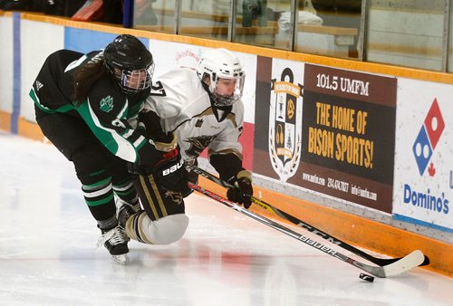 PHIL HOSSACK / Winnipeg Free Press -Saskatcheway Huskie Morgan Willoughby persues and trips up U of M Bison's Jordyn Zacharias Friday night at Wayne Flemming Arena. See Mike Sawatzky's story.  January 12, 2018