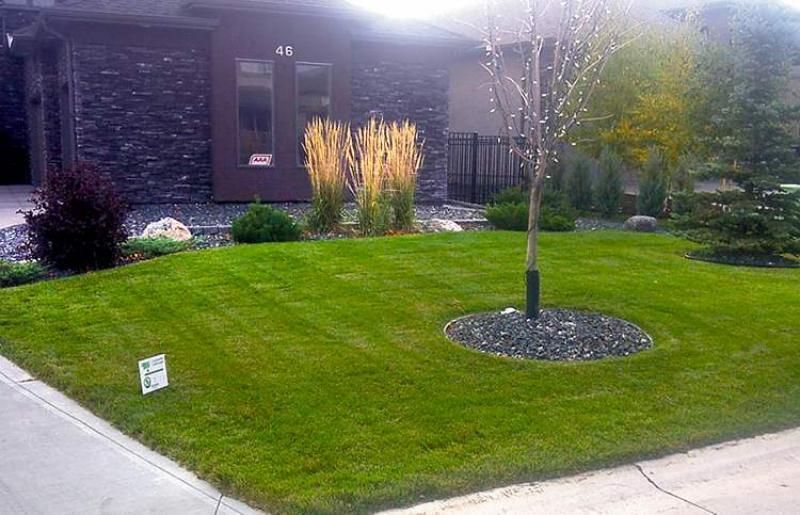 RENOVATIONS: Landscaping brings the beauty - Winnipeg Free