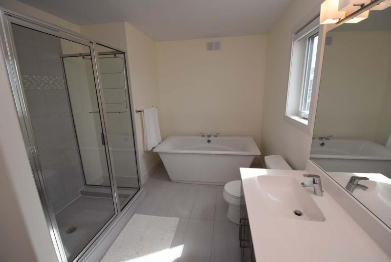 <p>The main bathroom has a soaker tub and shower.</p>