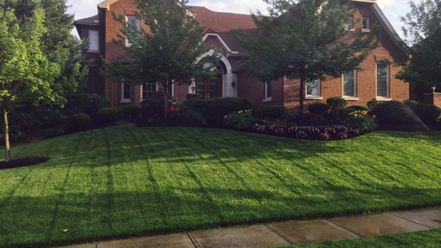 <p>TNS</p><p>A lush green lawn is possible, if you properly mow, fertilize and weed throughout the season.</p>