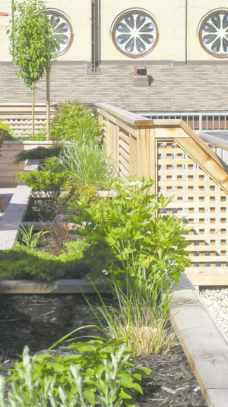 Gardening In Elevated Beds Is Easy And Puts You In Control
