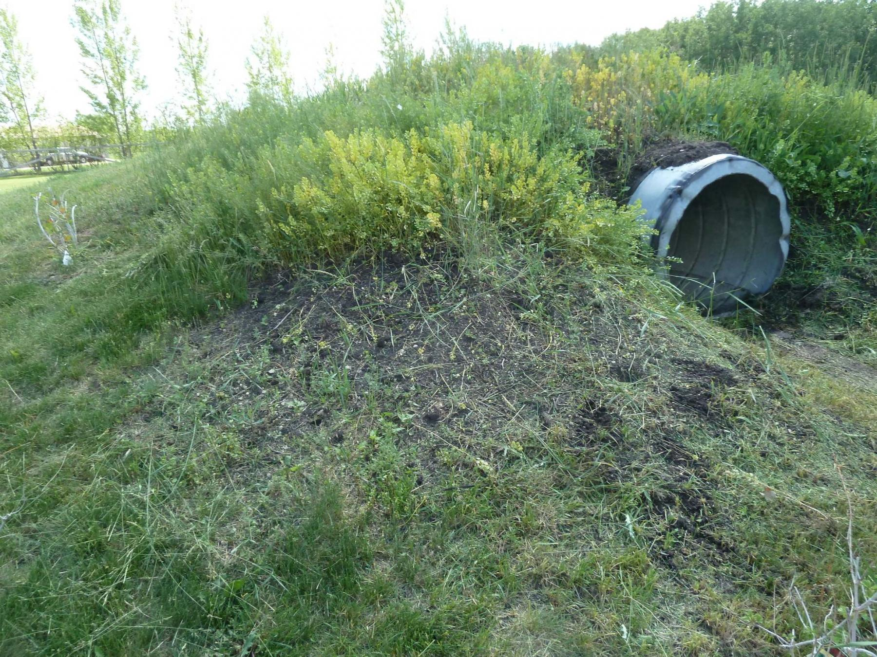 <p>LAURIE MUSTARD / WINNIPEG FREE PRESS</p><p>A concrete culvert marks the tunnel entrance to the tornado shelter buried under lawn-type soil.</p></p>