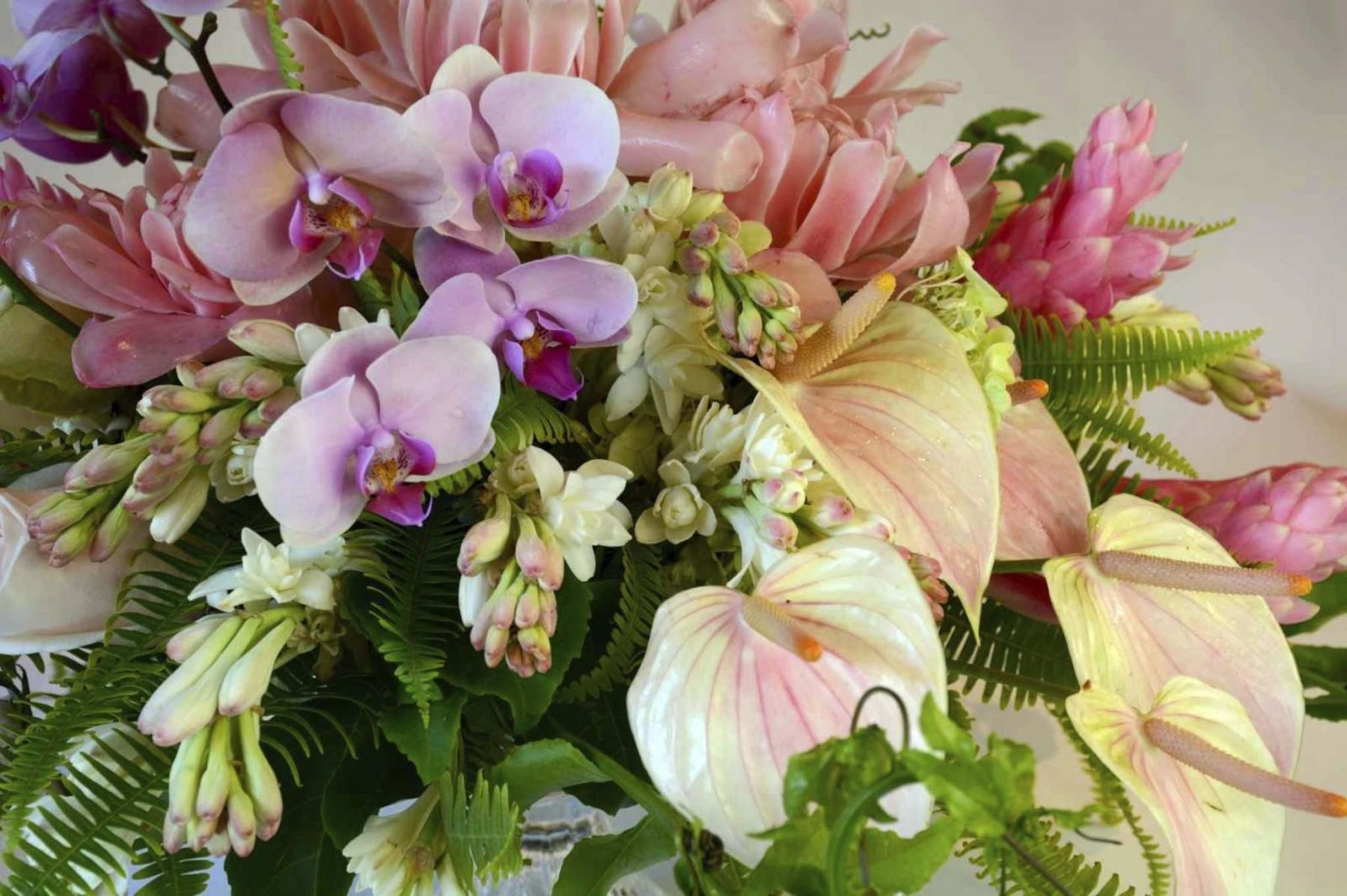 <p>Colleen Zacharias / WINNIPEG FREE PRESS</p><p>New botanical experiences can be yours with exotic Hawaii-grown anthurium, orchids, ginger and tropical greenery available direct from Hawaii to Canadian florists.</p></p>