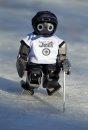 Robot hockey ...