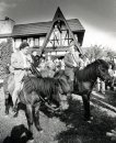 Mayor David Oddson of Reykjevik, Iceland and Mayor Bill Norrie mount icelandic horses at a reception held at the Round Table restaurant. undated (KEN GIGLIOTTI / WINNIPEG FREE PRESS) archives