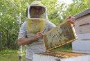 Bee keeper Jim ...