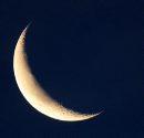 Crescent Moon- ...