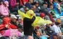 A fan tries to ...