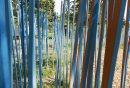 The Blue Stick ...