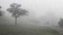 It was a foggy ...