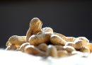 Peanuts in ...