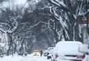 The snow ...