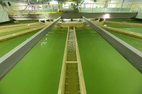 Brandon Sun Water Treatment Plant for Day in Brandon feature. (Bruce Bumstead/Brandon Sun)