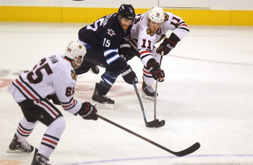 Winnipeg Jets #15  Halischuk  tries to get the puck from Blackhawk #11Jeremy Morin during the 3rd period of play Saturday afternoon at MTS Centre. Winnipeg Jets vs Chicago Blackhawks at MTS Centre Saturday. November 02,,  2013 Ruth Bonneville / Winnipeg Free Press
