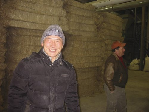 Robert Jin in front of bales of hemp straw to be shipped to China to make textiles. Jin is opening a hemp straw processing plant in Gilbert Plains. December 10, 2013. Bill Redekop story / photo. Winnipeg Free Press.