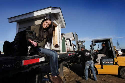 """Jasmine Colucci, a volunteer with NHARN, a animal rescue service for dogs on reserves, sits on a flat bed truck with one of her rescue dogs  """"Jet"""" while dog houses are being loaded by Mark Kohaykewych, president of Polar Industries (standing) which is volunteering their trucking services to  ship the dog house up to Norway House for free to help save dogs from the cold over the winter months, See story.    Oct 23,  2014 Ruth Bonneville / Winnipeg Free Press"""