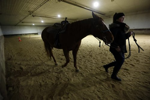 Rhianna Schell walks her horse RD around the ring . LOCAL - Miracle Ranch  NICK MARTIN STORY: Argyle Alternative High School started a program this year called Healing with Horses, where eight at-risk students go to Miracle Ranch once a week for ten weeks. Students are paired up with the same horse each session. The program uses principles of equine therapy and as well taps into the social/emotional nature of horses for learning. NOV. 18 2014   KEN GIGLIOTTI / WINNIPEG FREE PRESS