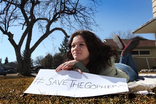 Paige McNabb has started an online petition to save the gophers from being poisoned.   See Jenna Dulewich's story. Ruth Bonneville / Winnipeg Free Press April 04,2015
