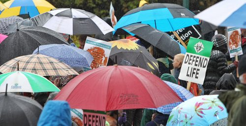 A few hundred pro-life protesters gathered at the Manitoba Legislative Building Thursday despite the steady rainfall.  150514 May 14, 2015 Mike Deal / Winnipeg Free Press
