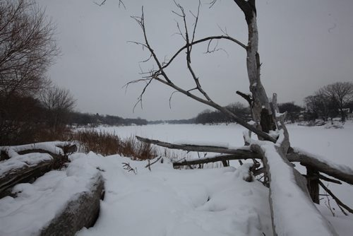 VIew from the banks of the Red River near St. John's Park on Main Street and Mountain Ave.  looking north east.    See story on raw sewage emptying into the river.   Aldo Santin.  Jan 20, 2016 Ruth Bonneville / Winnipeg Free Press