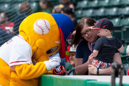 Mason, who turns 3 years old next week, gets his glove signed by Winnipeg Goldeyes mascot Goldie at the Goldeyes Open House at Shaw Park. Saturday, May 6, 2017. Copyright Jessica Finn for the Winnipeg Free Press.