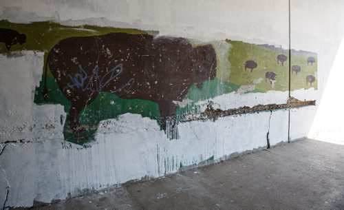 MIKE DEAL / WINNIPEG FREE PRESS Bison painted on the east wall of the Main Street Underpass was discovered when the wall was pressure-washed in preparation for the recent project to paint the walls of the underpass white to brighten the walkway in addition to the improved lighting. 170728 - Friday, July 28, 2017.