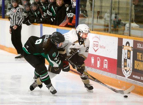 PHIL HOSSACK / Winnipeg Free Press -Saskatcheway Huskie Morgan Willoughby persues and trips up U of M Bison's Jordyn Zacharias Friday night at Wayne Flemming Arena. See Mike Sawatzky's story.  January 12, 2018