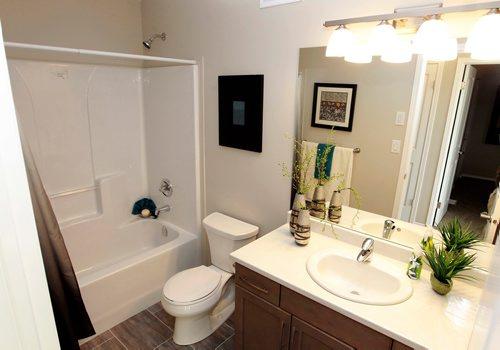 BORIS MINKEVICH / WINNIPEG FREE PRESS NEW HOMES - 139 Castlebury Meadows Drive. Bathroom. TODD LEWYS STORY  Feb. 12, 2018
